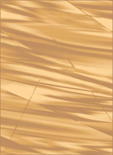 ARABICA ORZECH 060X110