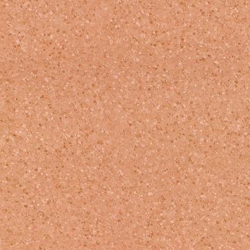 TITANIUM 50193 TERRA 2M