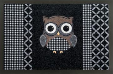 WYCIERACZKA OWL 50 40X60