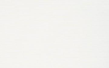PS205 WHITE 25X40 G1