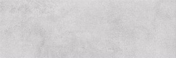 SNOWDROPS L. GREY 20X60 G1
