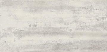 FLOORWOOD WHITE LAP 29X59,3 G1