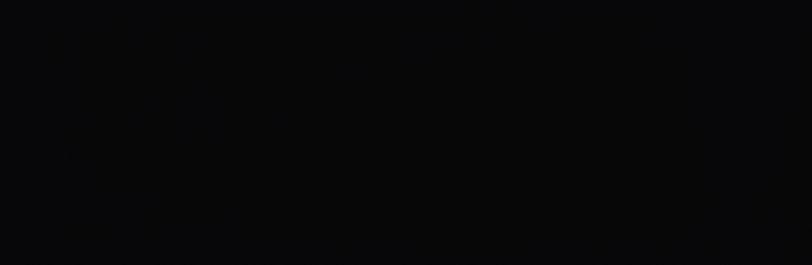 PS 901 BLACK GLOSSY 29X89 G1